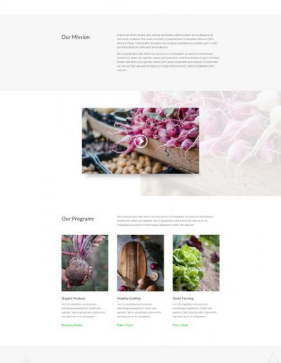 Farmers Market About web template